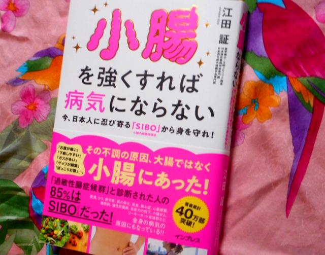 小腸を強くすれば病気にならない 今、日本人に忍び寄る「SIBO」から身を守れ!