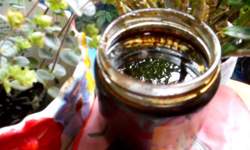 鉄分とルチンが豊富なそば蜂蜜の効果・効能