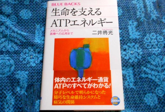 ATPはミトコンドリアによるエネルギー通貨。