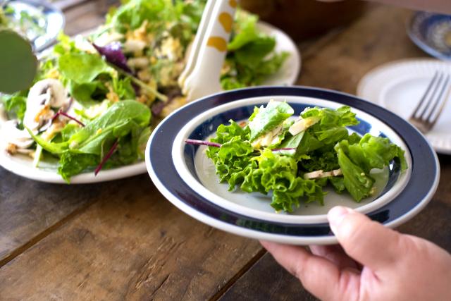 食物繊維やオリゴ糖は腸内細菌のために必要な炭水化物