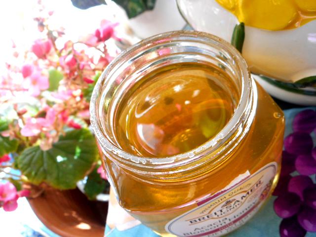 ハチミツがもつ整腸作用と抗菌・殺菌作用