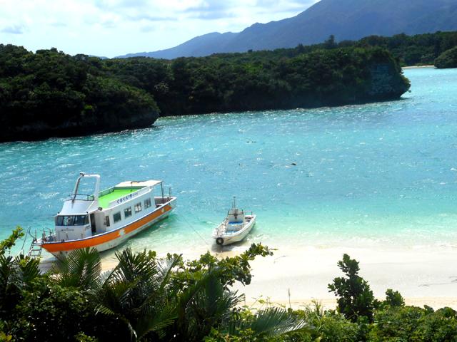 沖縄や宮古島、石垣島などを旅行した際は、ぜひ海ブドウを美味しく召し上がってみてくださいね。