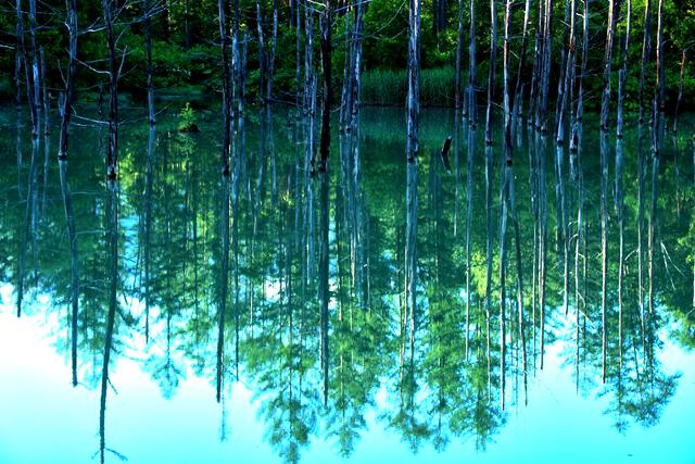 呼吸によるマインドフルネス瞑想を行う