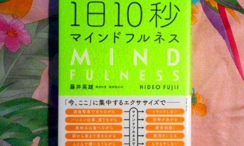 瞑想での雑念は棚上げすることが大切ー『1日10秒マインドフルネス』
