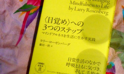 マインドフルネスは関係性の中で活かすー『〈目覚め〉への3つのステップ マインドフルネスを生活に生かす実践 』