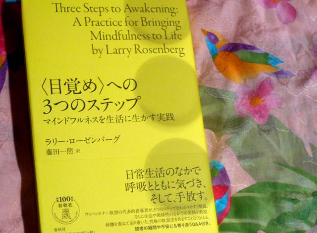 ラリー・ローゼンバーグ 『〈目覚め〉への3つのステップ マインドフルネスを生活に生かす実践 』