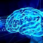 今さら聞けない神経可塑性とは何か?【いつもの脳は変えられる】
