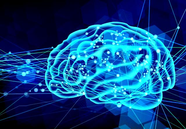 今さら聞けない神経可塑性とは何か?【脳のために知っておきたい】
