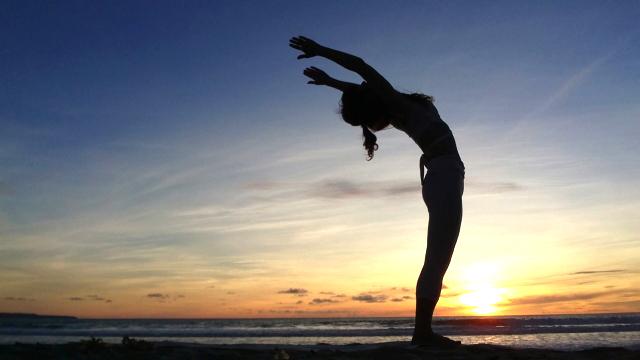 運動や瞑想の習慣で脳は変えることができる。