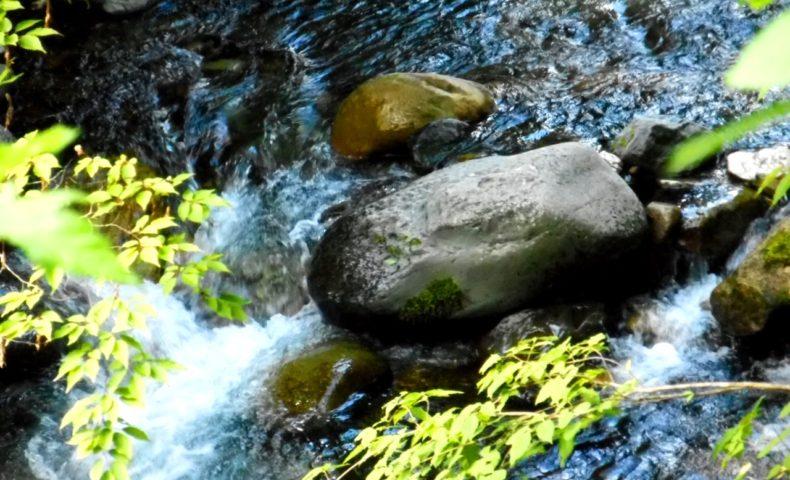 自然の水音が心地良い自然音動画3選【ストレスやコロナ疲れの解消にオススメ】