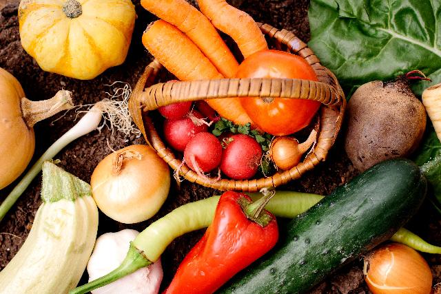 食物繊維がもつデトックス作用
