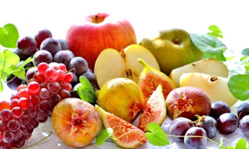 痩せ菌を増やす酵素ダイエット・糖質制限・ゆる断食