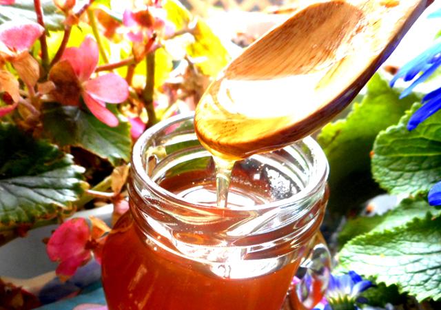 蜂蜜の栄養効果がミトコンドリアのエネルギーを生み出す