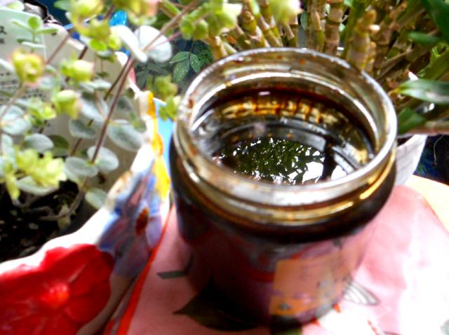そば蜂蜜ヨーグルトは日々の健康生活にオススメ