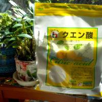 ハチミツ+クエン酸の疲労回復効果が絶大