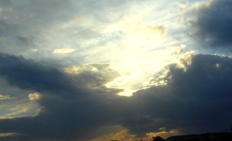 冬のエネルギーチャージはこまめな日光浴で。