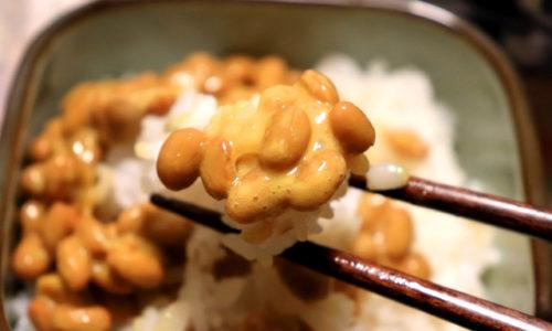 納豆は腸内フローラにオススメな発酵食品。