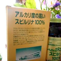 太古からの栄養源「スピルリナ」の効果・効能とは?