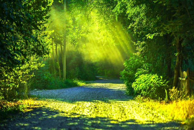 慈悲の瞑想は自分自身を慈しむことから始まる