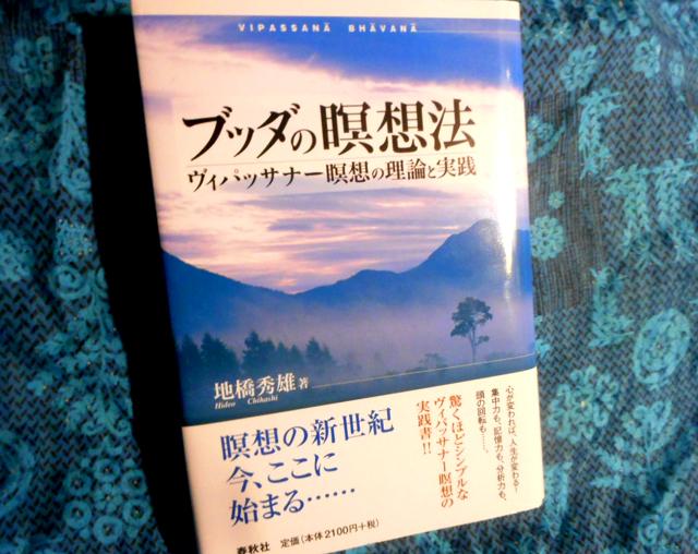 『ブッダの瞑想法 ヴィパッサナー瞑想の理論と実践』