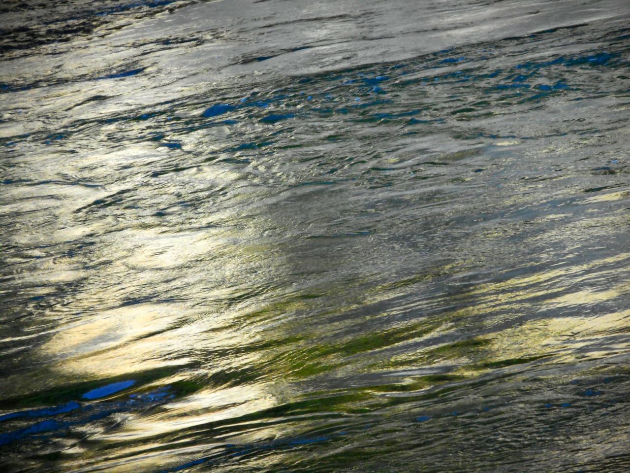 コロナ疲れが解消されるような風景画像(広瀬川)