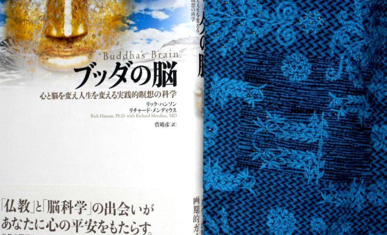 『ブッダの脳』は、最初に苦しみの矢を抜くために役立つ一冊。