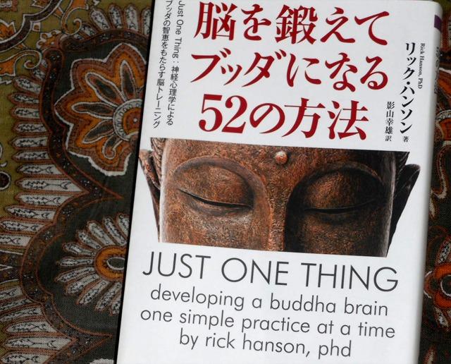 『脳を鍛えてブッダになる52の方法』は、心の苦しみを減らしていくためにオススメの一冊。